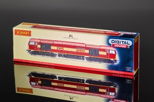 "Hornby Class 60 ""EWS"" THE HUNDRED OF HOO 60042 model R2899XS"